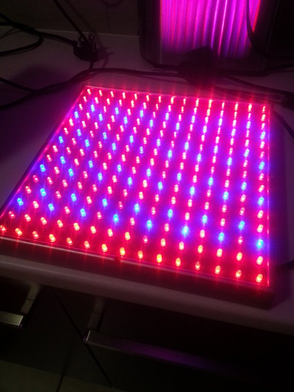 for sale 15w led grow light apsa