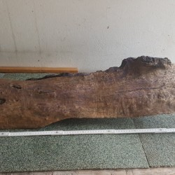 Driftwood for sale1